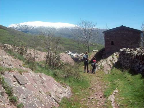 Excursión a pie al Coll d'Oli: 1h15min